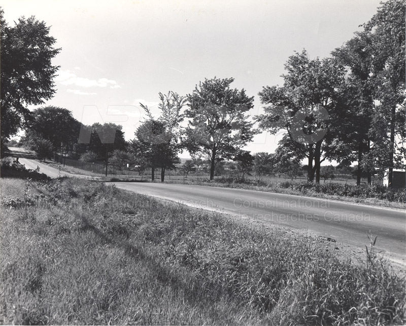 Site of Radio & E.E. Building (M-50) Before Construction- Mtl. Rd. Campus 003