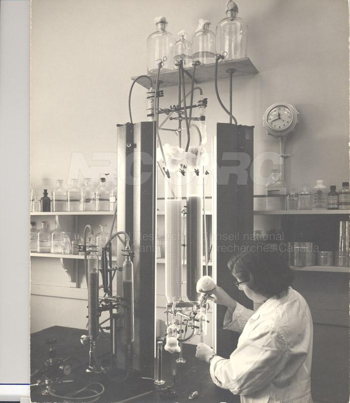 Algal Growth Columns 1954