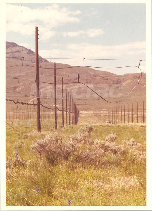 Dominion Observatory- Pendicton c.1966 018