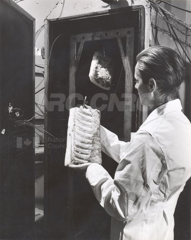 Food Chemistry- Meat Storage c.1948 001