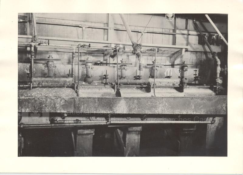 Milkweed Research c.1939 002