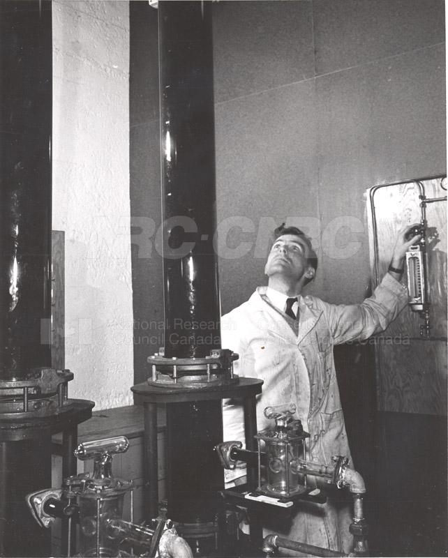 Citric Acid Fermentation 1953