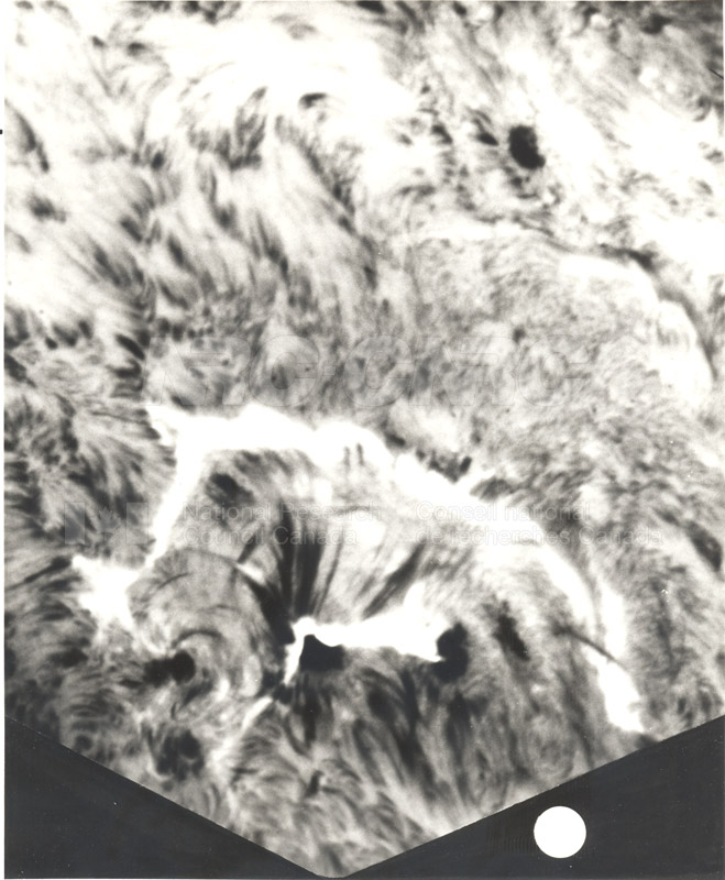 Solar Flare- Photographed Through NRC's Solar Telescope April 28 1978