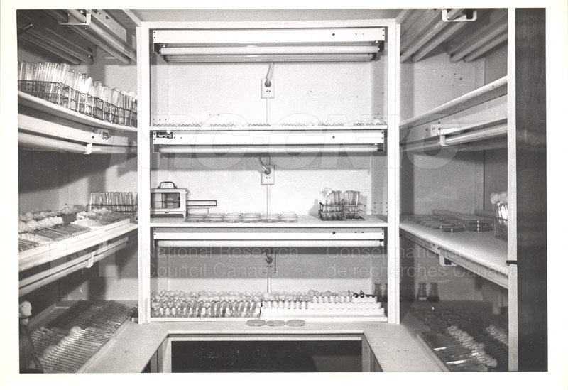 Photothermostatic Room c.1950 001