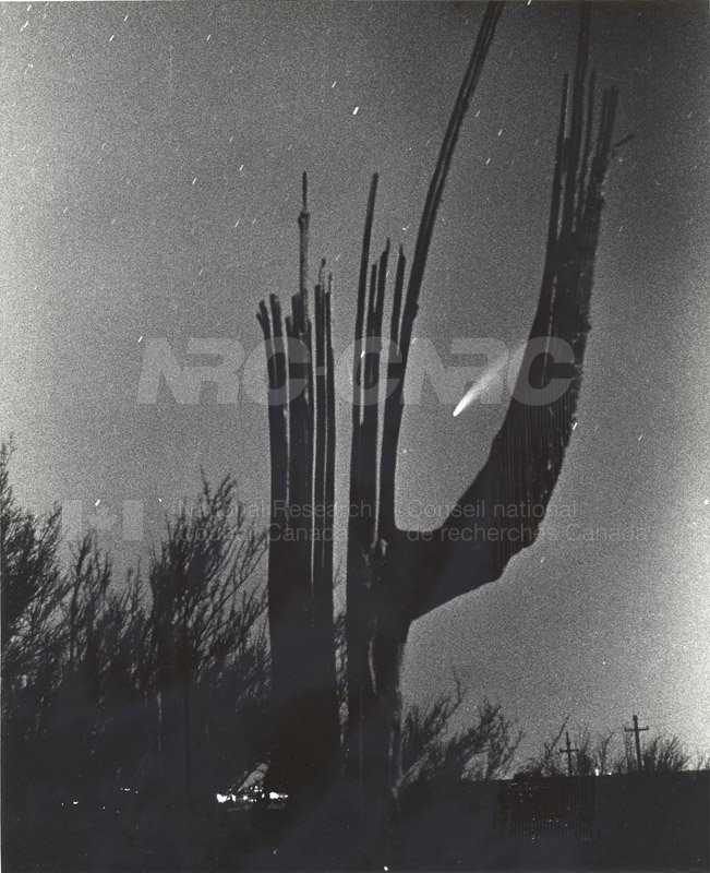 Comet Bennett- Seen From the Desert near Tucson Arizona (Photograph sent by Stephen Larson)March 27 1970