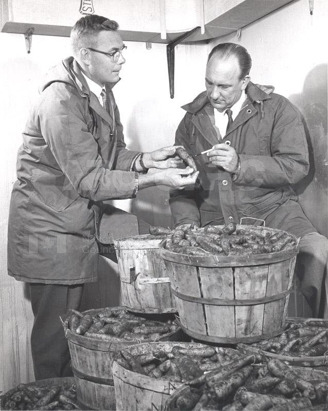 Plant Research Bert Vandenburg, C.P. Lentz c.1960