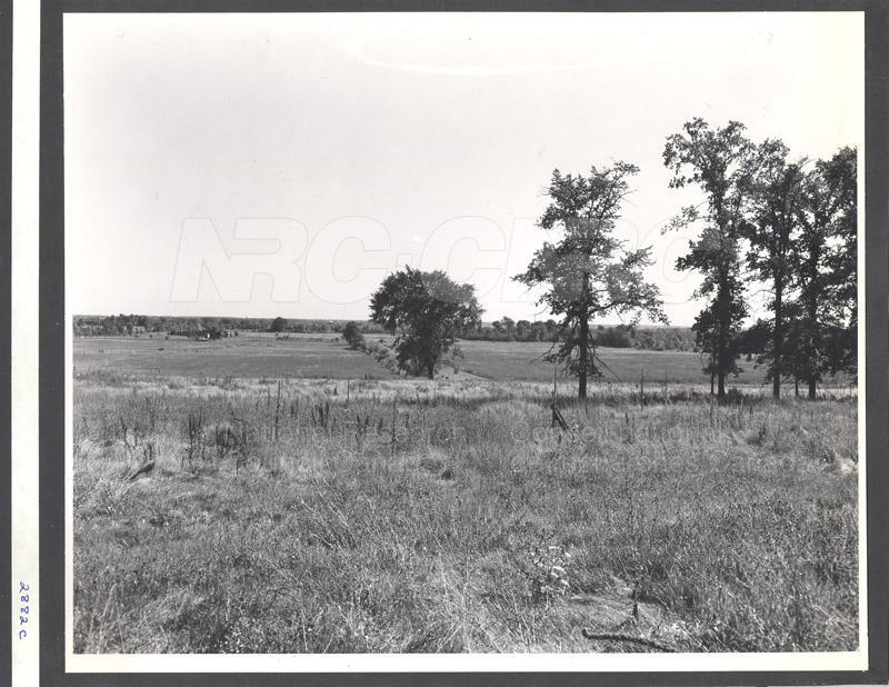 Administration Building Construction 1950s 029