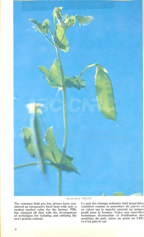 Brochure Biological Sciences 82-03-033