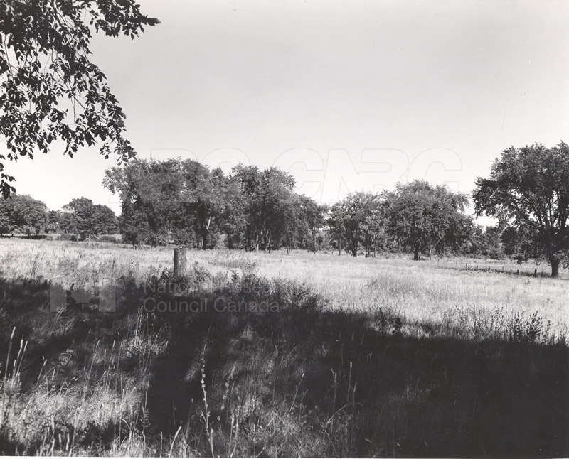 Site of Radio & E.E. Building (M-50) Before Construction- Mtl. Rd. Campus 007
