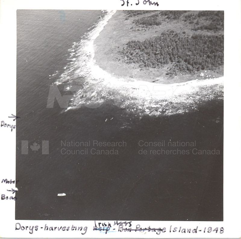 Wood Harbour c.1948 001