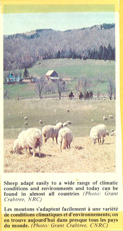 Brochure- Atlantic Regional Lab 82-01-037 001