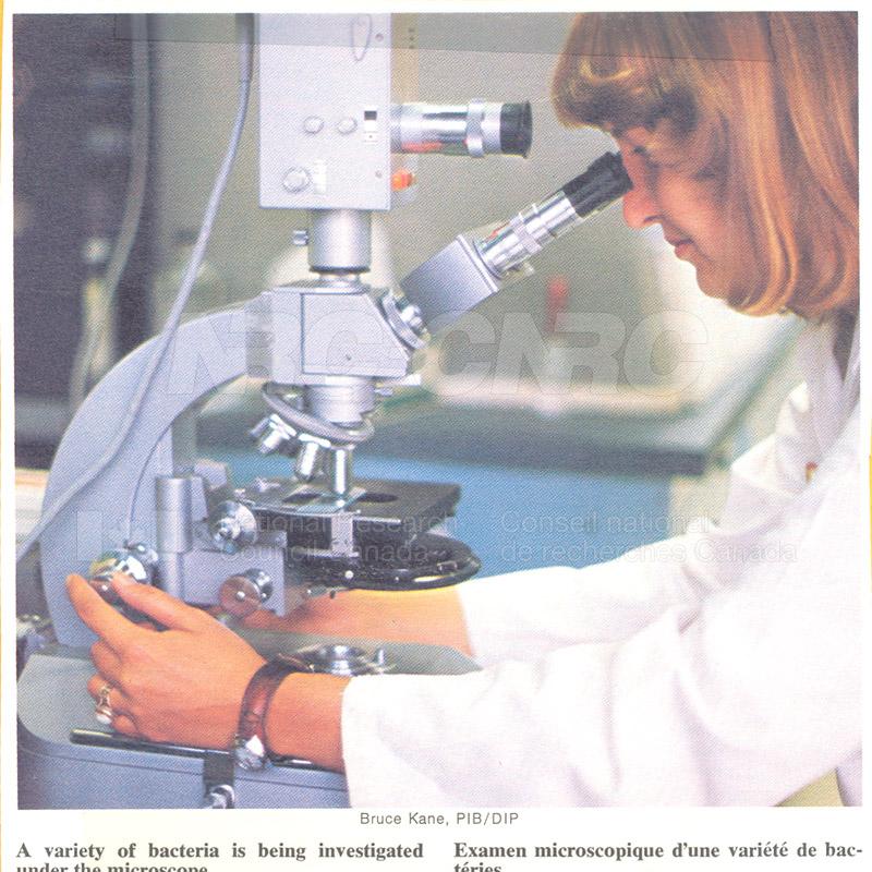 Brochure Biological Sciences 82-02-025