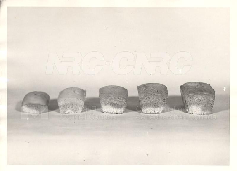 Dough Testing Machine- Kassian Klynke- Lab technician 1930s 002