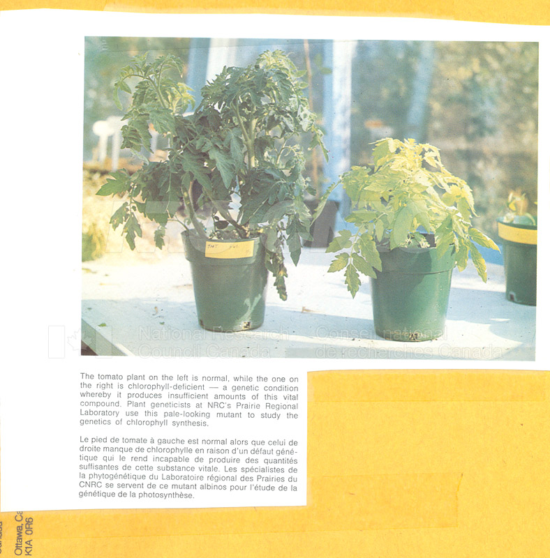 Brochure Biological Sciences 82-03-025