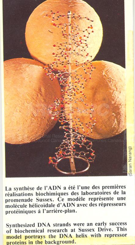 Brochure Biological Sciences 82-02-011 003