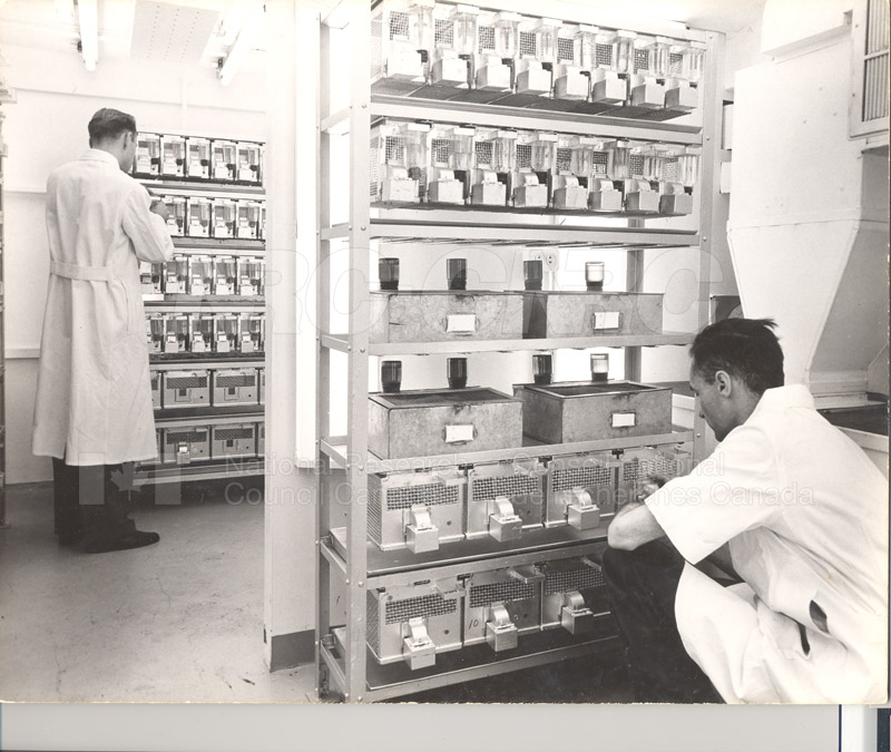 Dr. S. Hart- Animal Labs 1950