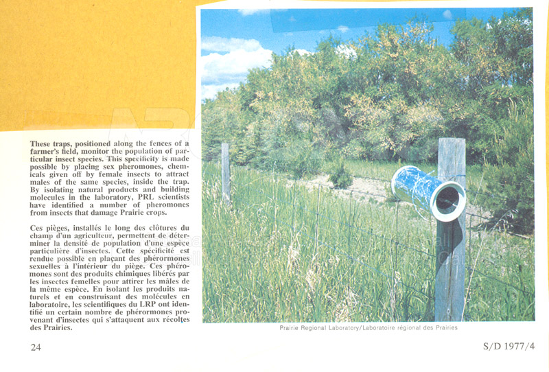 Brochure Biological Sciences 82-03-018