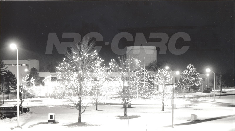 Montreal Road Campus Decorated for Christmas, Lights in trees outside M-20 001