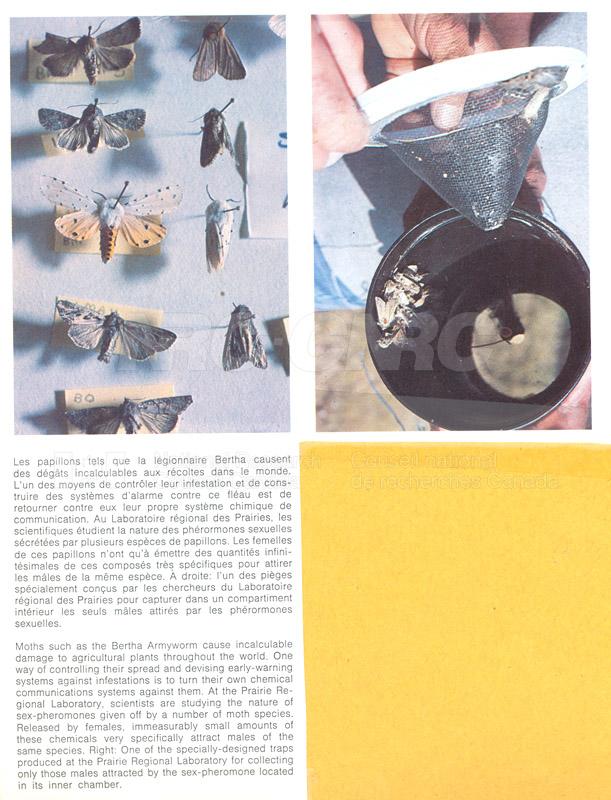 Brochure Biological Sciences 82-03-026
