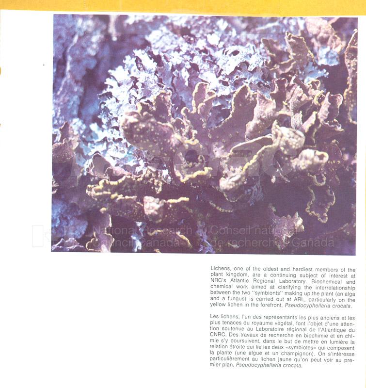 Brochure- Atlantic Regional Lab 82-01-016