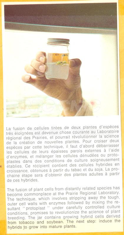 Brochure Biological Sciences 82-03-019