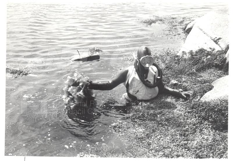 Diving for 'Irish Moss'