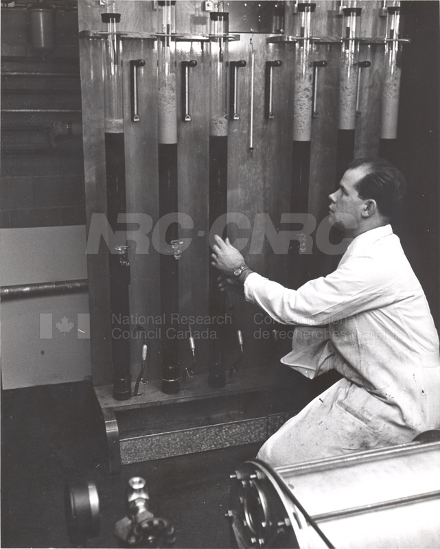 Fermentations and Enzymology Production of Citric Acid 1953