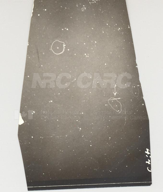 Photo of Leonid Meteor by Watson- Pamona College 1932