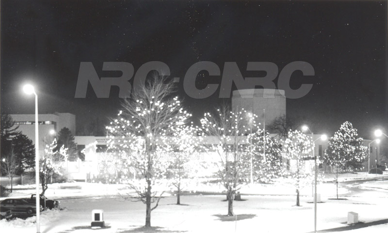 Montreal Road Campus Decorated for Christmas, Lights in trees outside M-20 002
