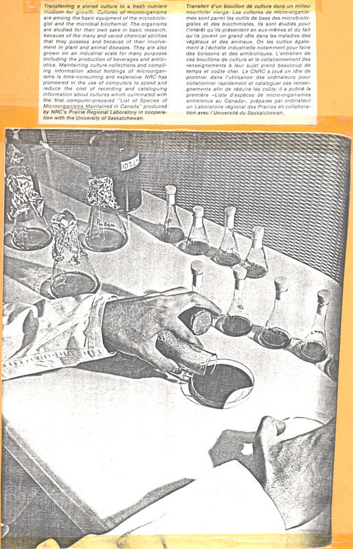 Brochure Biological Sciences 82-03-024