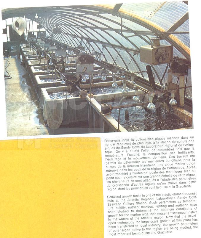 Brochure- Atlantic Regional Lab 82-01-004 001